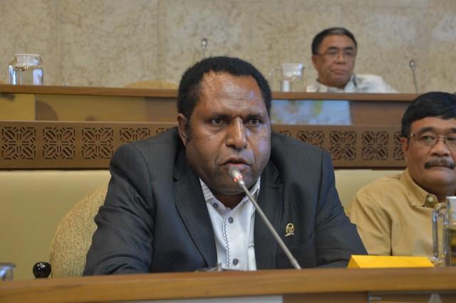 Pemekaran Wilayah Papua, Legislator Usul Amandemen UU Otsus